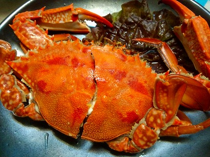 ワタリ蟹 (1)jpg.jpg